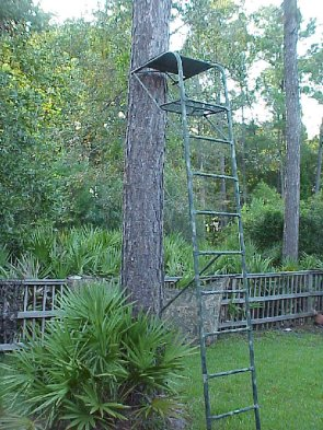 digiplan 16 foot metal ladder tree stand